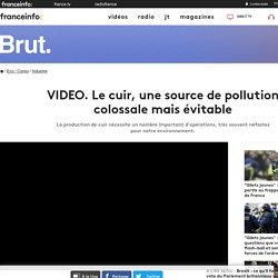 VIDEO. Le cuir, une source de pollution colossale mais évitable