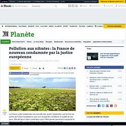 Pollution aux nitrates : la France de nouveau condamnée par la justice européenne