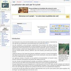 """UNIVERSITE DE LORRAINE - """" Le cuivre dans la pollution des sols""""."""