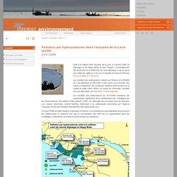 Pollution par hydrocarbures dans l'estuaire de la Loire (suite) / 2006 / Actualité / infos