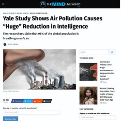 """Yale Study Shows Air Pollution Causes """"Huge"""" Reduction in Intelligence"""