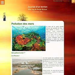 Pollution des mers