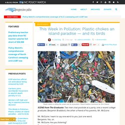 This Week in Pollution: Plastic chokes an island paradise - and its birds - The Progressive Pulse