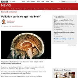 Pollution particles 'get into brain'