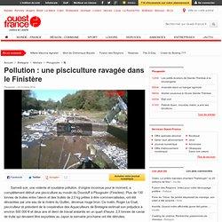 Une pisciculture ravagée dans le Finistère - Plougoulm - Faits divers - Ouest-France