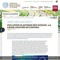 Pollution plastique des océans : la faune souffre en continu