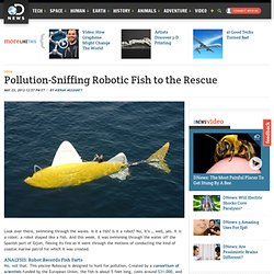 Pollution-Sniffing Robotic Fish to the Rescue