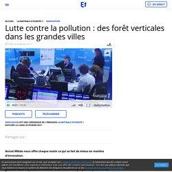 Lutte contre la pollution : des forêt verticales dans les grandes villes