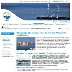 Ramassage des algues vertes en mer - Pollutions liées à l'eutrophisation - Qualité de l'eau - Parc naturel marin - Iroise