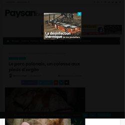 PAYSAN BRETON 01/10/18 Le porc polonais, un colosse aux pieds d'argile