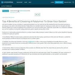 Top 4 Benefits of Choosing A Polytunnel To Grow Your Garden: polytunnelsuk