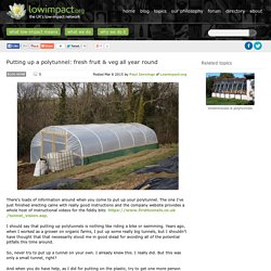 Putting up a polytunnel: fresh fruit & veg all year round -Low impact living info, training, products & services