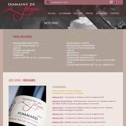 POMMARD - Domaine de la Galopière