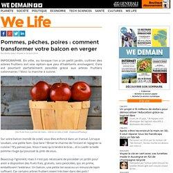 Pommes, pêches, poires : comment transformer votre balcon en verger