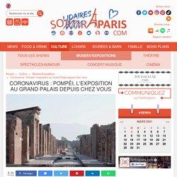 Coronavirus : Pompéi, l'exposition au Grand Palais depuis chez vous
