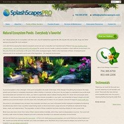 Ponds & Water Gardens - SplashscapesSplashscapes