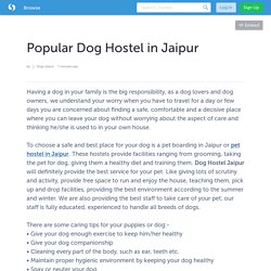 Popular Dog Hostel in Jaipur