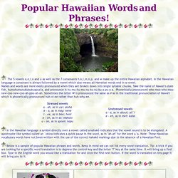 Popular Hawaiian Words & Phrases
