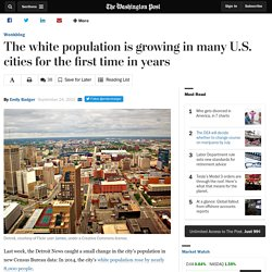 The white population is growing in many U.S. cities for the first time in years
