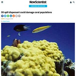 Oil spill dispersant could damage coral populations - environment - 03 August 2010