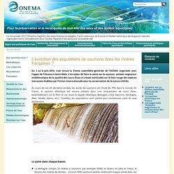 ONEMA - JUILLET 2014 - INFOS PRESSE. Au sommaire:Demain restera-t-il des saumons dans les rivières françaises ?