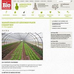 Portail de la Bio en Bourgogne : Maraichage, plein champ bio en Bourgogne