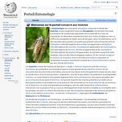 Portail:Entomologie