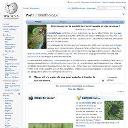 Portail:Ornithologie