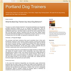 Portland Dog Trainers: What the Best Dog Trainers Say About Dog Behavior?