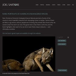 RARE: Portraits of America's Endangered Species « Joel Sartore