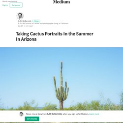 Taking Cactus Portraits In the Summer In Arizona – A. D. McCormick