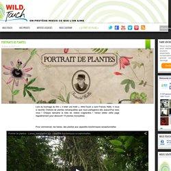 Portraits de plantes
