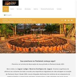 Jaguar Ecological Reserve