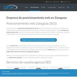 Empresa de posicionamiento web en Zaragoza