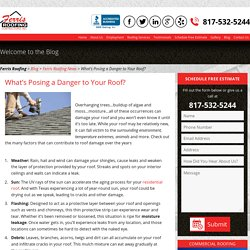 What's Posing a Danger to Your Roof?- Roofing Repair Tips