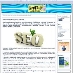 Posizionamento organico naturale per siti web a Vicenza, Verona, Treviso, Padova, Milano - Web4raw