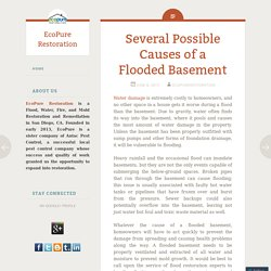 Several Possible Causes of a Flooded Basement