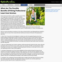 What Are The Possible Benefits Of Hiring Professional Lawn Care Services