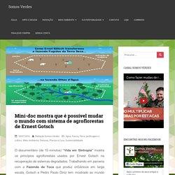 Mini-doc mostra que é possível mudar o mundo com sistema de agroflorestas de Ernest Gotsch