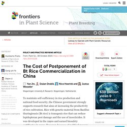 FRONT. PLANT SCI. 08/10/19 The Cost of Postponement of Bt Rice Commercialization in China