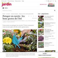 Potager en carrés : les bons gestes de l'été - Détente Jardin