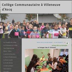 Le Potager 6°ACC - Site de collegecommunautaire !