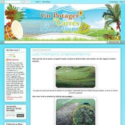 Un Potager en Carrés en Guadeloupe, et oui!: décembre 2011