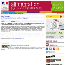 ALIMENTATION_GOUV_FR 13/06/13 Le potager de Marianne, l'atelier anti-gaspi