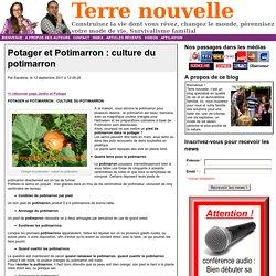 Potager et Potimarron : culture du potimarron