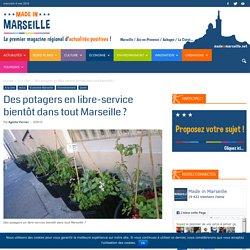 Des potagers en libre-service bientôt dans tout Marseille ?
