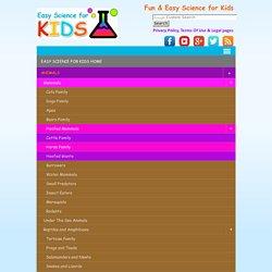 Potato Light Bulb Experiment - Science for Kids