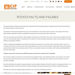 Potato Facts and Figures