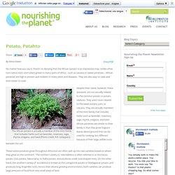 Livingstone Potato, Potahto