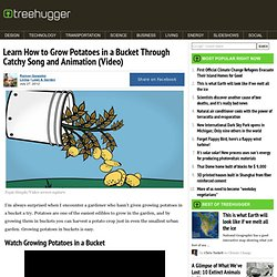 Learn How to Grow Potatoes in a Bucket Through Catchy Song and Animation (Video)